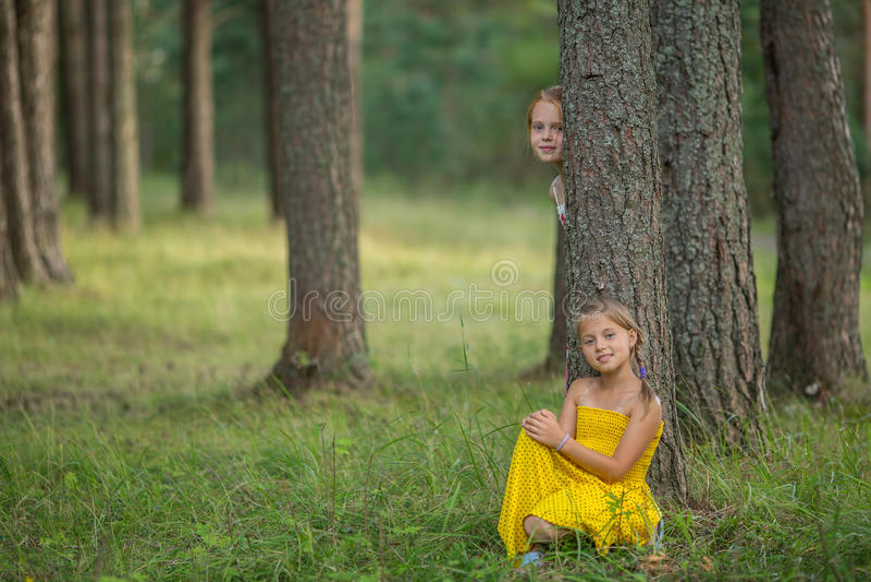 Två små flickor poserar för kameran bland sörjer i parkera Lyckligt royaltyfri fotografi