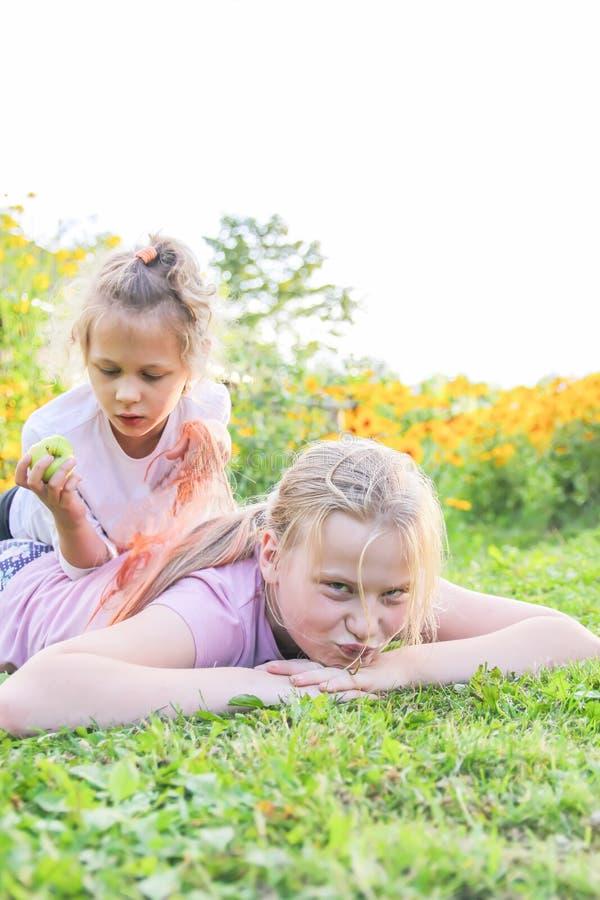 Två små flickor som spelar på grönt gräs i solig sommardag i bygd arkivbild