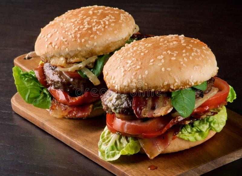 Två smakliga hamburgare royaltyfria foton
