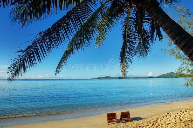 Två solstolar på en tropisk strand royaltyfria bilder