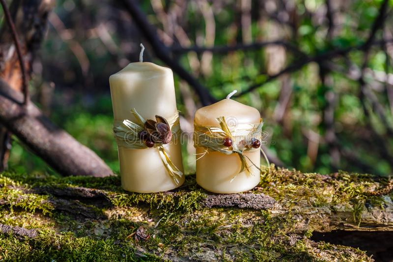 Två stearinljus på en gammal inloggning skogen arkivbild