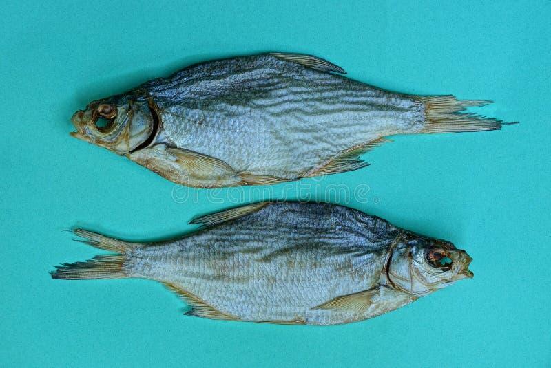 Två stora grå färger torkade fisken på en blå tabell royaltyfri bild