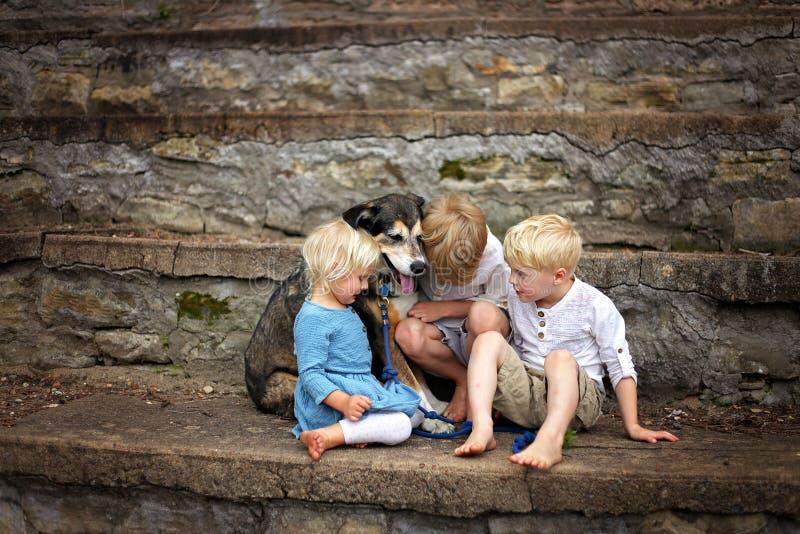 Två storebröder och deras bra hund tröstar deras skriande lilla syster royaltyfri fotografi