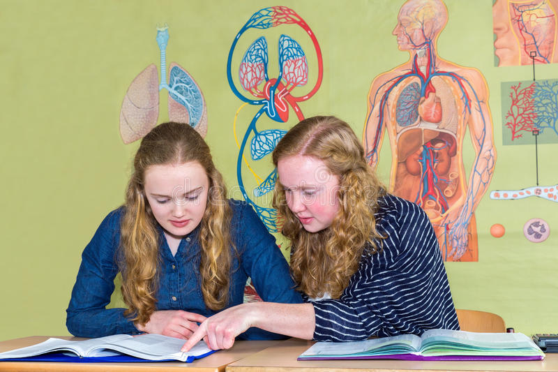 Två studenter som lär med böcker i biologikurs royaltyfri fotografi