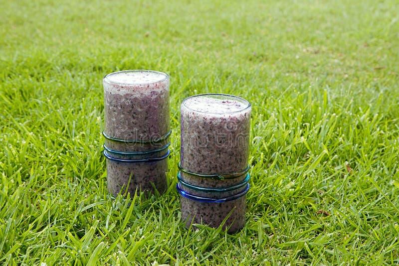 Två sunda drinkar, blåbärsmoothies med kokosnöten mjölkar tjänat som på gräs royaltyfria bilder