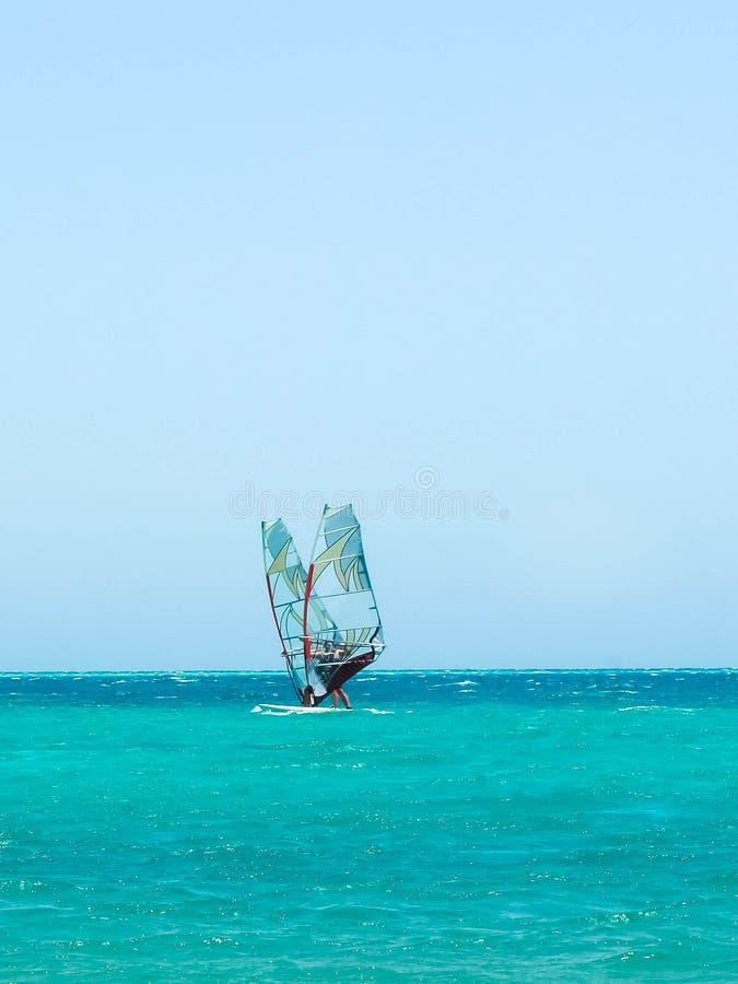 Två surfare på att segla bräden i havet arkivfoton