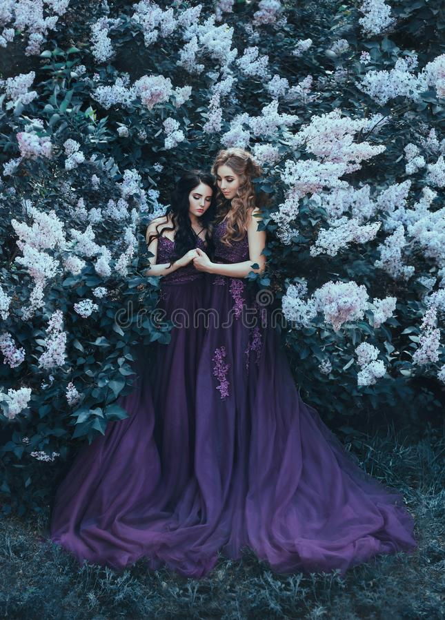 Två syster-prinsessor i lyxiga purpurfärgade klänningar med långa drev, kram mot bakgrunden av blommande lilor På krabbt lockigt fotografering för bildbyråer