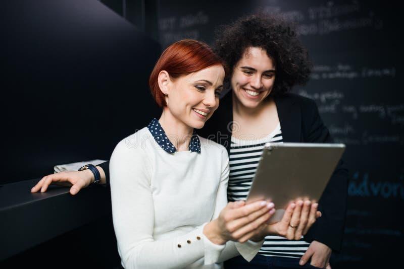 Två unga businesspeople som i regeringsställning använder minnestavlan, startbegrepp arkivfoton