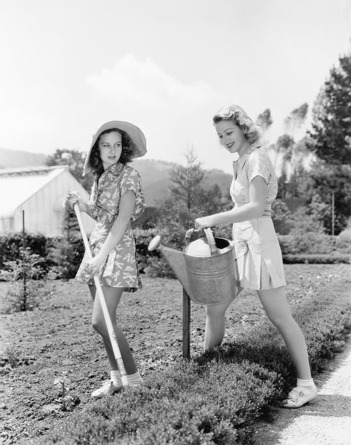 Två unga kvinnor som gör att arbeta i trädgården (alla visade personer inte är längre uppehälle, och inget gods finns Leverantörg arkivfoto