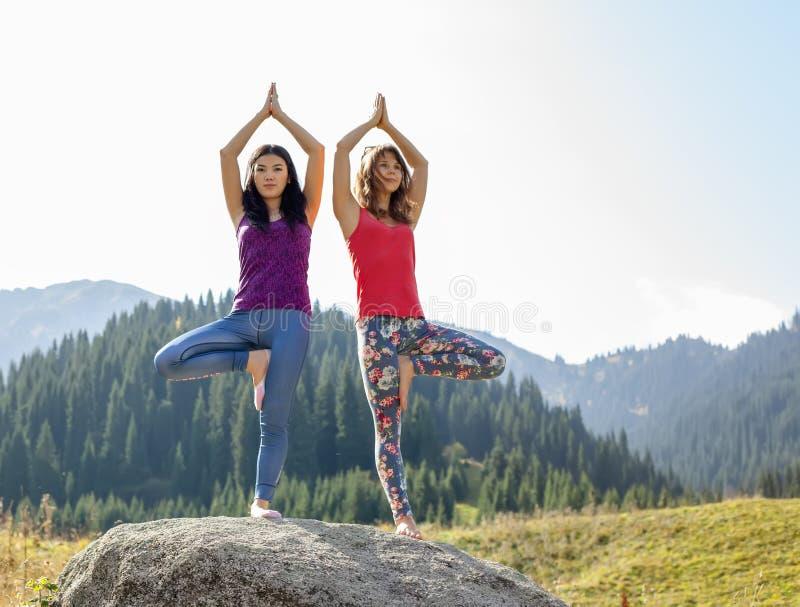 Två unga kvinnor som gör yoga på en vagga arkivfoto