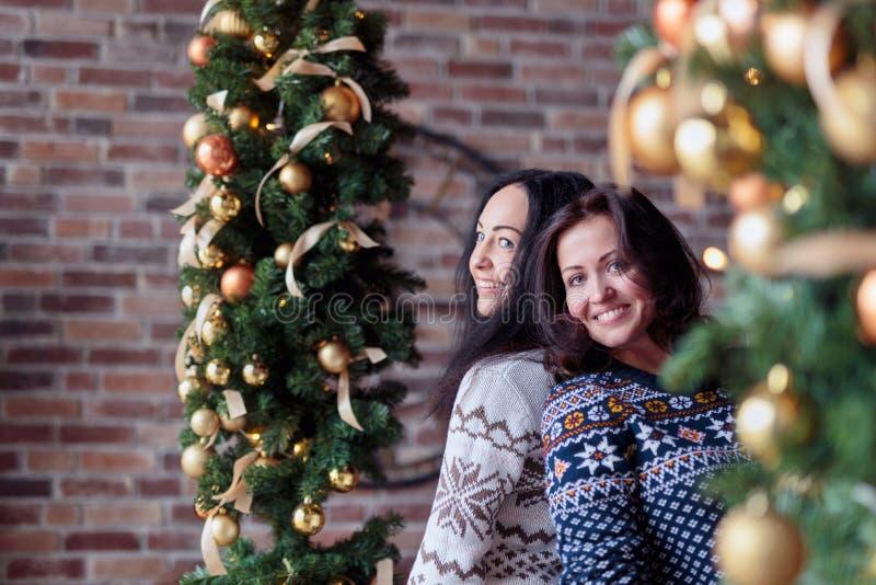 Två unga lyckliga kvinnor som poserar nära julpynt royaltyfri foto