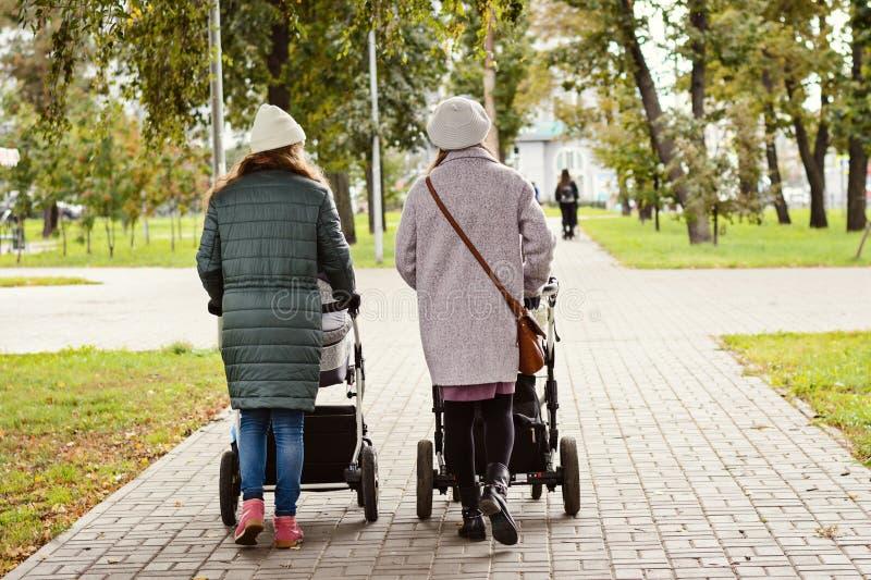 Två unga mammor som flickvänner går med unga barn i sittvagnar för en höst, parkerar Kvinnor på en gå med ungarna, tävla royaltyfri fotografi