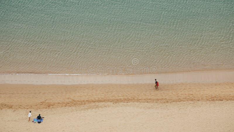 Två unga par spenderar tid på havskustlinjen royaltyfri bild