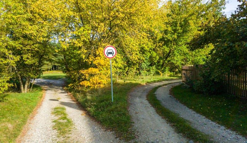Två vägar i skog arkivbild