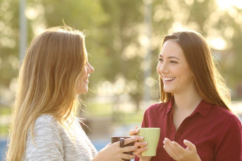 Två vänner som utomhus talar royaltyfri foto