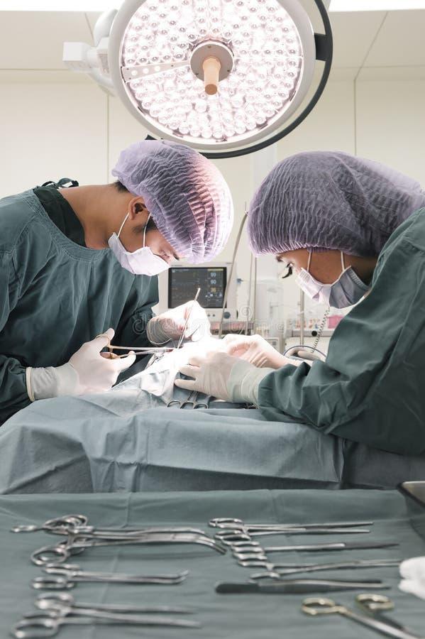 Två veterinär- kirurger i fungeringsrum fotografering för bildbyråer