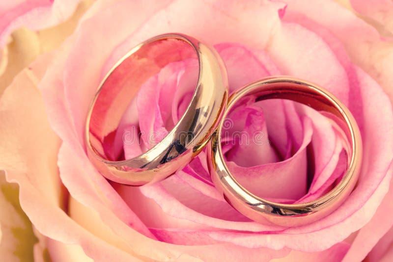 Två vigselringar med den härliga rosa blomman fotografering för bildbyråer