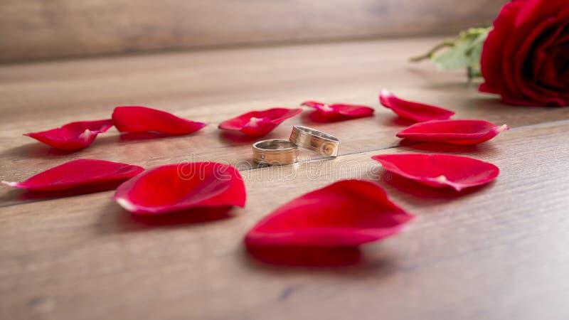 Två vigselringar som ligger på träskrivbordet som omges av nytt rött r arkivbild