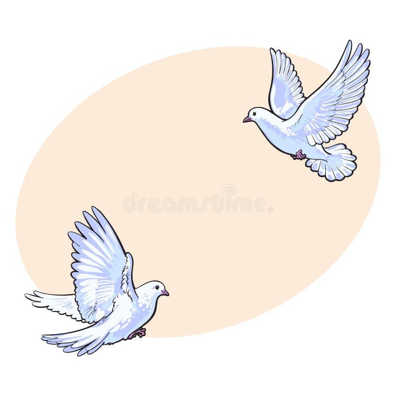 Två vita duvor för fritt flyg som isoleras skissar stilillustrationen stock illustrationer