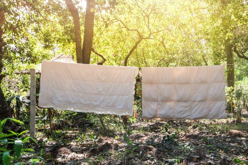 Två vita filtar som hänger på en klädstreck som torkar i eftermiddagsolen i bygd, Thailand royaltyfri bild