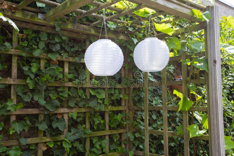 Två vita lyktor som hänger i en grön trädgård royaltyfri bild