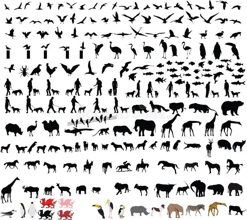 Tvåhundra djura vektorillustrationer stock illustrationer
