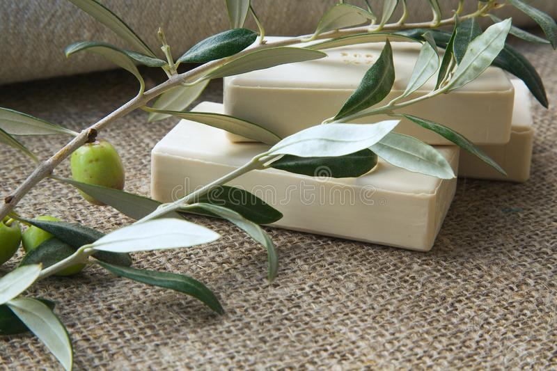 Tvålstänger med olivolja royaltyfri fotografi