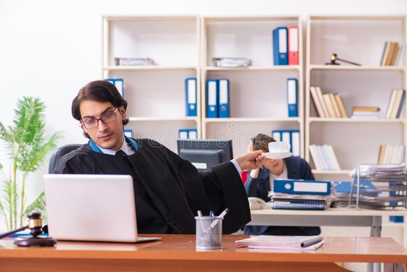 Tv? advokater som arbetar i kontoret royaltyfri bild