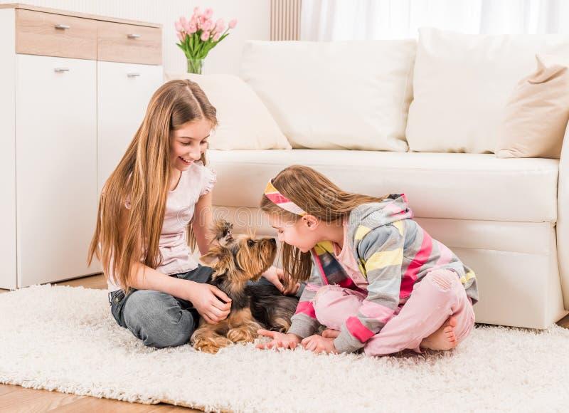 Tv? flickor som spelar med yorkie arkivfoto