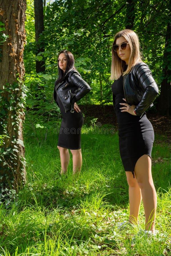 Tv? h?rliga flickor som poserar i en skog p? en solig v?rdag arkivfoton