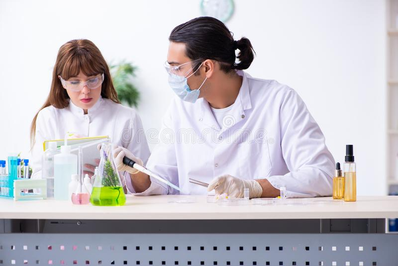 Tv? kemister som arbetar i labbet royaltyfria bilder