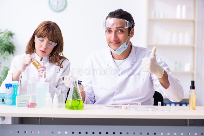 Tv? kemister som arbetar i labbet royaltyfri fotografi