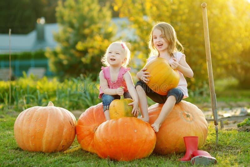 Tv? lilla systrar som sitter p? enorma pumpor p? en pumpalapp Ungar som väljer pumpor på landslantgården på varm höstdag arkivfoto