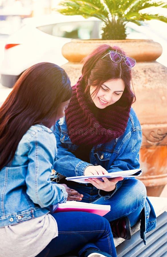 Tv? unga kvinnor studerar p? en b?nk arkivfoto