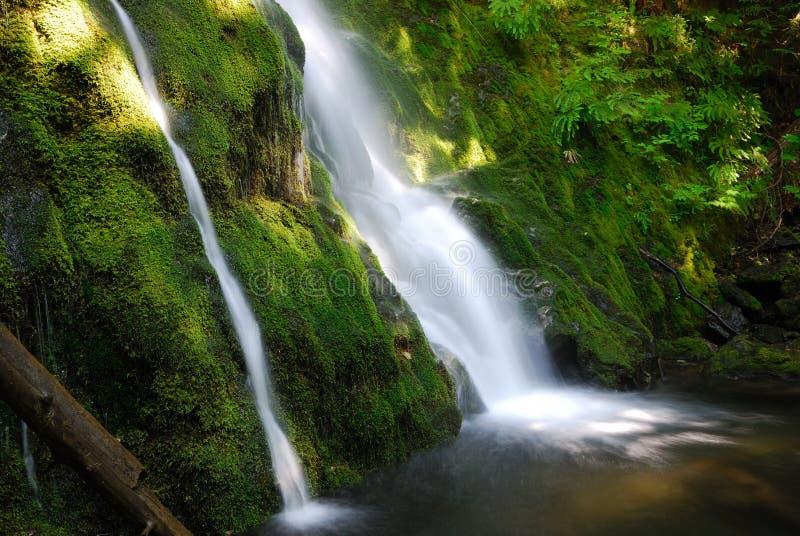tvilling- nationell olympic park för falls royaltyfri bild