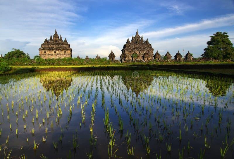 Tvilling- tempel royaltyfri bild