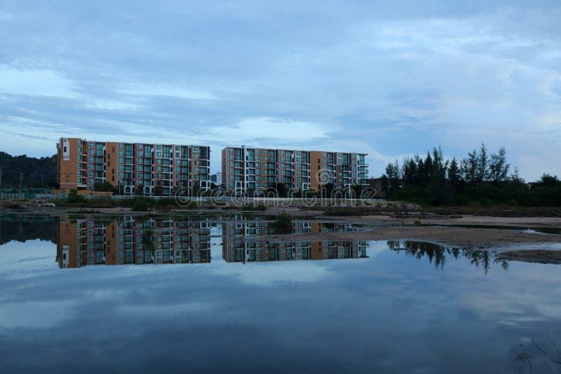 Tvillingbröder reflekterade i vattnet med härliga mangrovar för en växt royaltyfria bilder