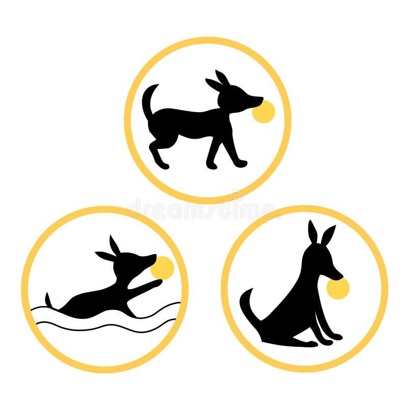 Twój zwierzę domowe Iść być mistrzem Właśnie Trenuje One royalty ilustracja
