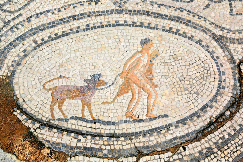 Twaalfde Arbeid van Hercules, mozaïek in Volubilis, Marokko royalty-vrije stock foto's