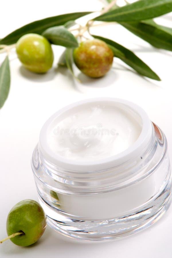 twarz kremowej gałązka oliwek obraz stock