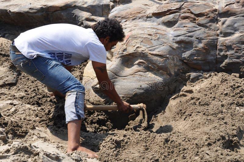 Twarz Shiva na Vagator Goa obrazy stock