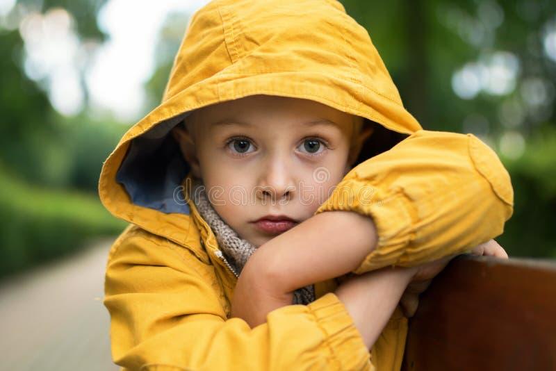 Twarz smutny, chłopiec, z dużymi pięknymi oczami zdjęcia royalty free