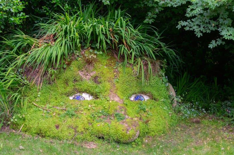 Twarz w ogródzie zdjęcie royalty free