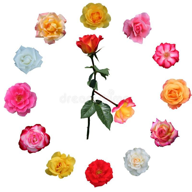 twarz zegara zrobił róże ilustracji