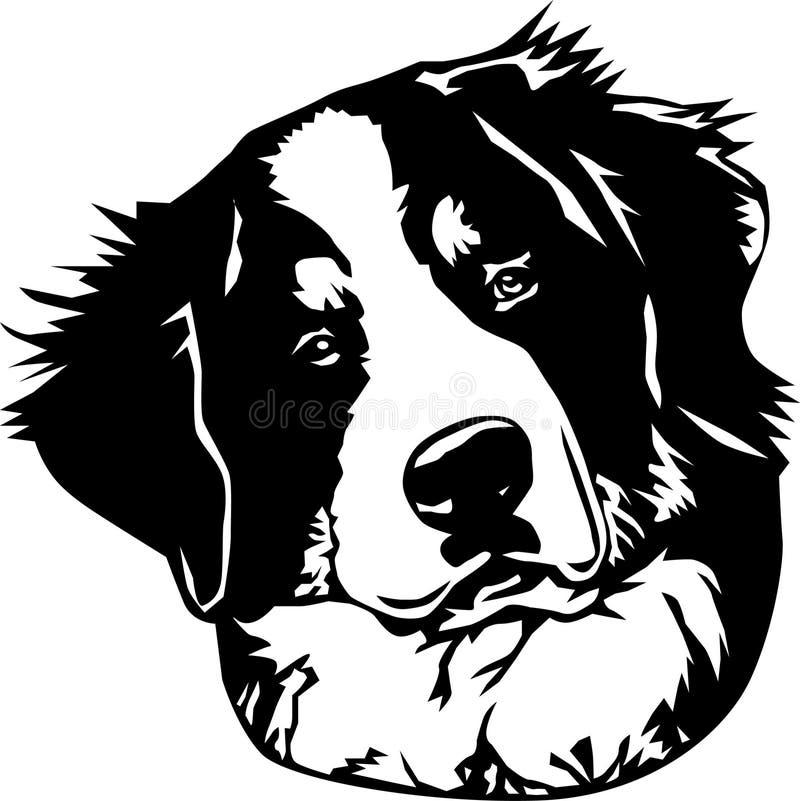 twarzy bernese psia góra royalty ilustracja