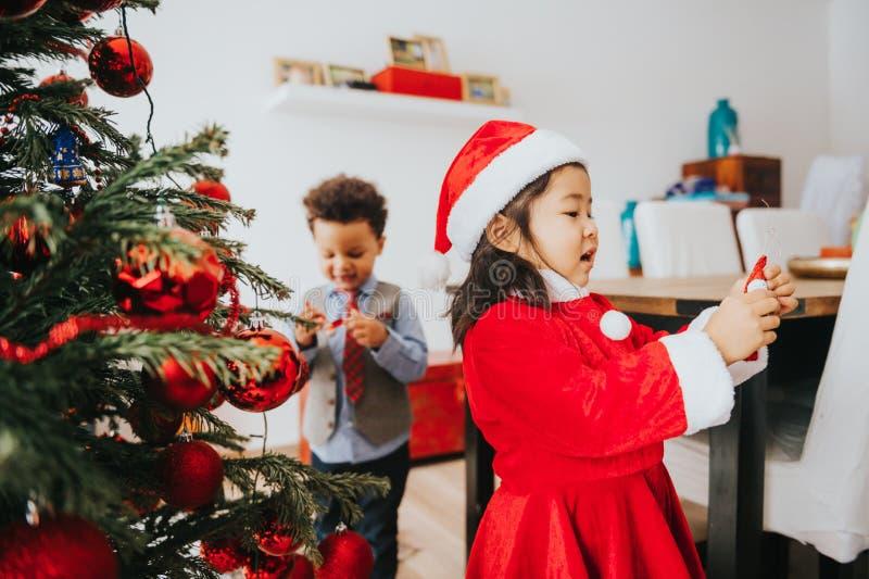 Twee aanbiddelijke 3 éénjarigenjonge geitjes die door de Kerstboom spelen stock afbeeldingen