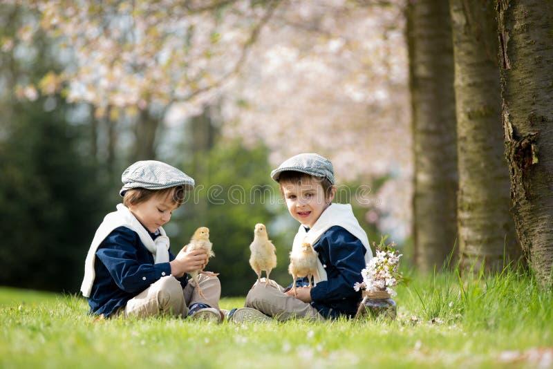 Twee aanbiddelijke peuterkinderen, jongensbroers, die met litt spelen royalty-vrije stock afbeelding