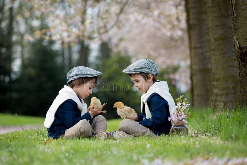 Twee aanbiddelijke peuterkinderen, jongensbroers, die met litt spelen stock afbeelding