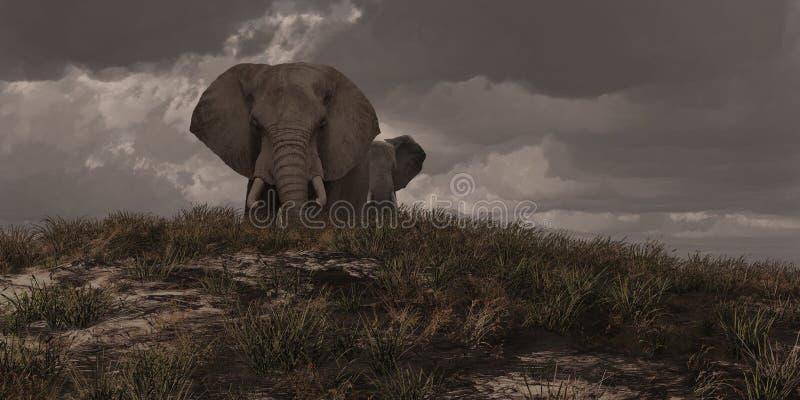 Twee Afrikaanse Olifanten vector illustratie