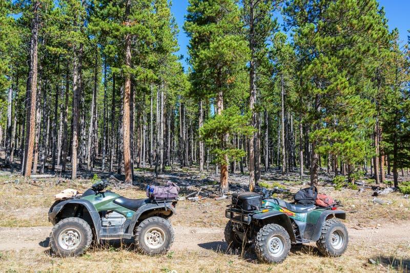 Twee ATVs in een Bos stock fotografie